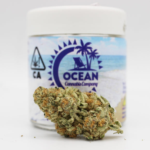 Purple Punch (i) - Ocean Cannabis Company