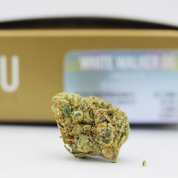 White Walker OG (i) - CRU (20.6% THC)