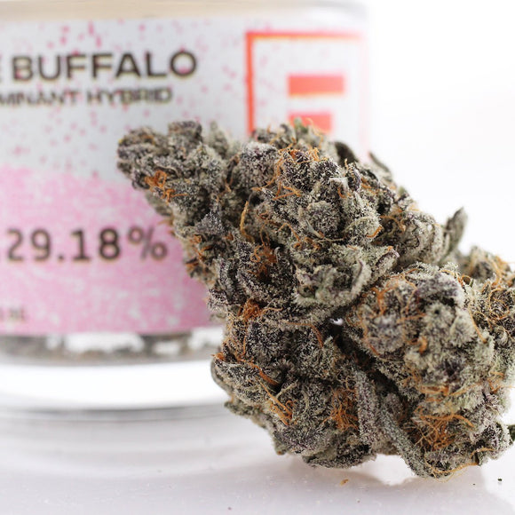 White Buffalo (s) - Fade Co. (24% THC)