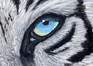"White Tiger Painting Art Print - ""Baby Blues"" by Jason Fetko"