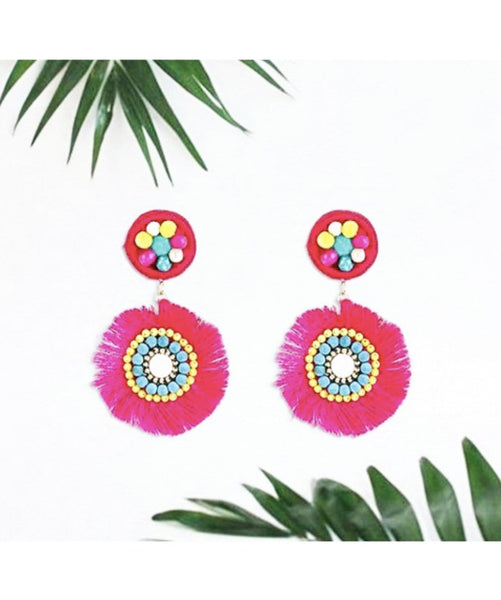 Colour Wheel Tassel Earrings