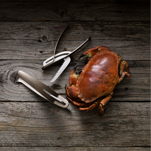 Caretta Shellfish Cracker, Spring Stainless Steel