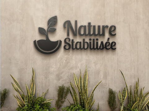 nature-stabilisee-specialiste-stabilisation