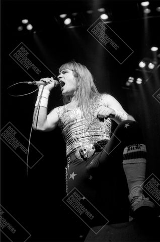 Bruce Dickinson, Iron Maiden live AP Art Print