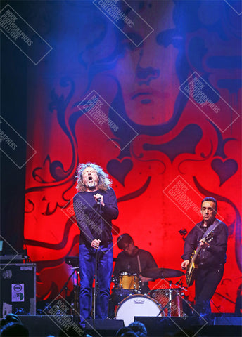 Robert Plant live with band Art Print