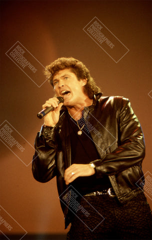 David Hasselhoff live in Antwerp AP Art Print