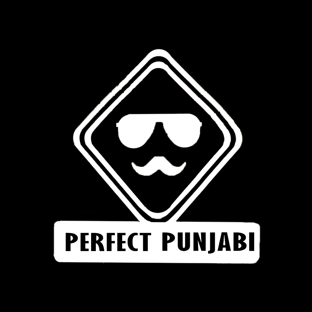 Stubborne Perfect Punjabi T-Shirt