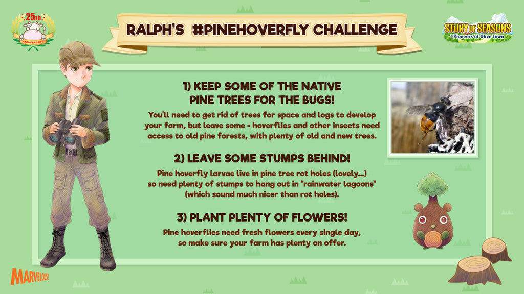 Pine Hoverfly Challenge - Plant trees, keep stumps and plant flowers