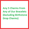 Any 5 Charms (Excluding Birthstone Drop Charms)