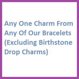 Any Charm (Excluding Birthstone Drop Charm)