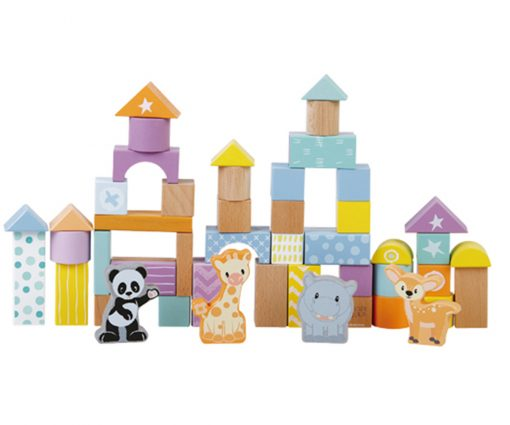 Studio Circus 50pc Block Set