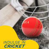 Corseca Orb Cricket Ball Portable Wireless Bluetooth Sports Speaker
