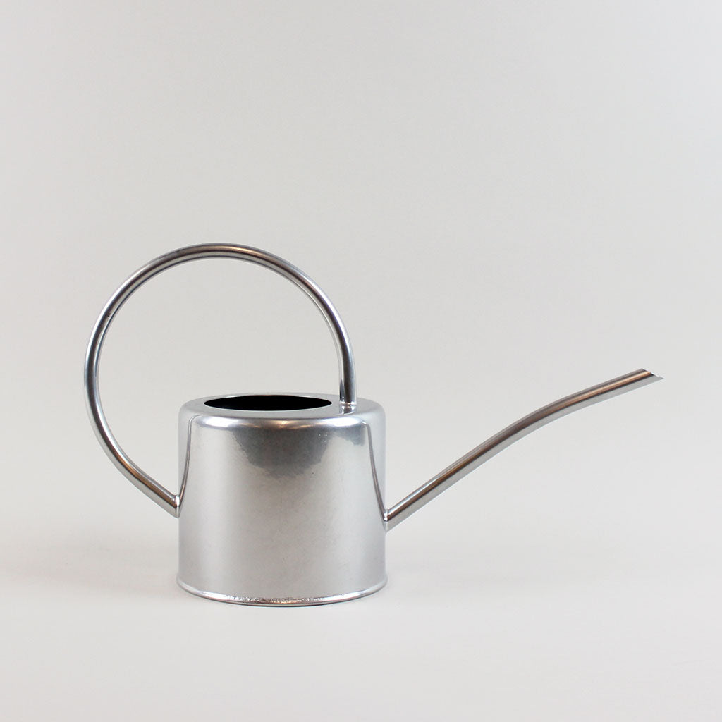 Silver Watering Can - Large