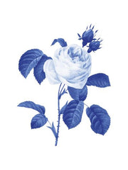 Canvas Blue Botanical