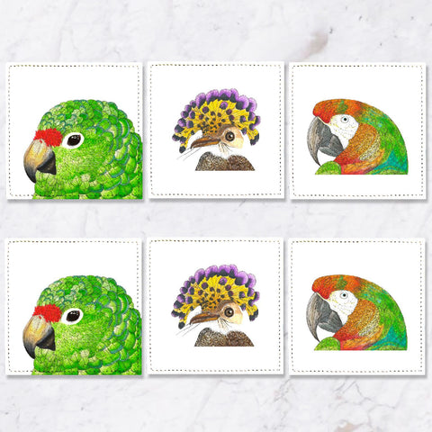 Posavasos Aves Tropicales Collection