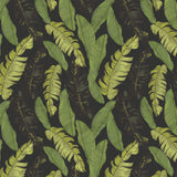 Papel Mural Hand drawn beautiful tropical leaves