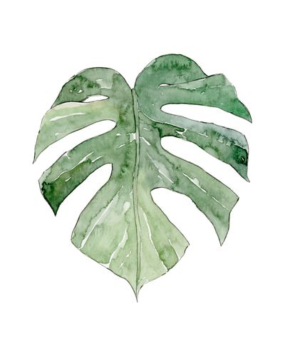 Canvas Leaf #11