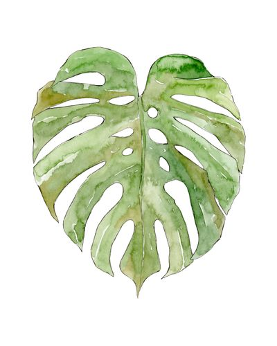 Canvas Leaf #8