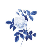 Canvas Blue Botanical II
