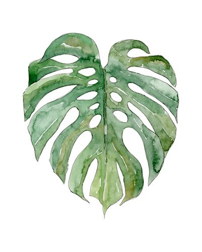 Canvas Leaf #3