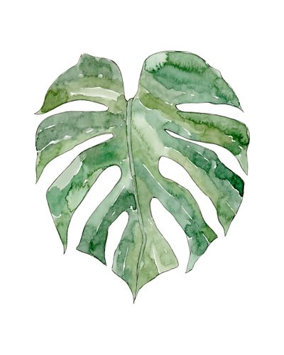 Canvas Leaf #12