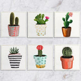 Posavasos Cactus Collection