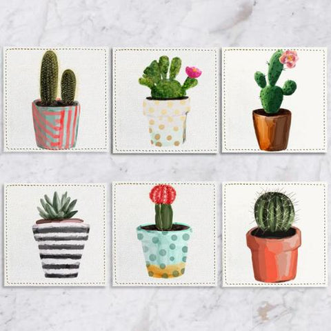Posavasos Cactus Collection - Galeria Impresionarte