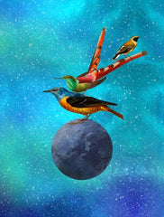 Canvas Birds Planet