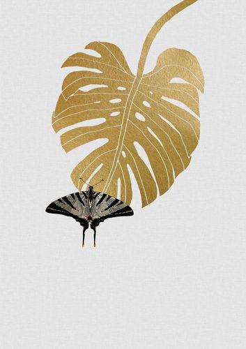 Canvas Butterfly and Monstera Leaf