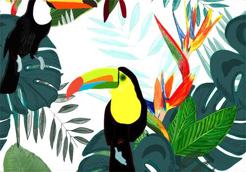 Individual Toucan and Bird of Paradise Flowers