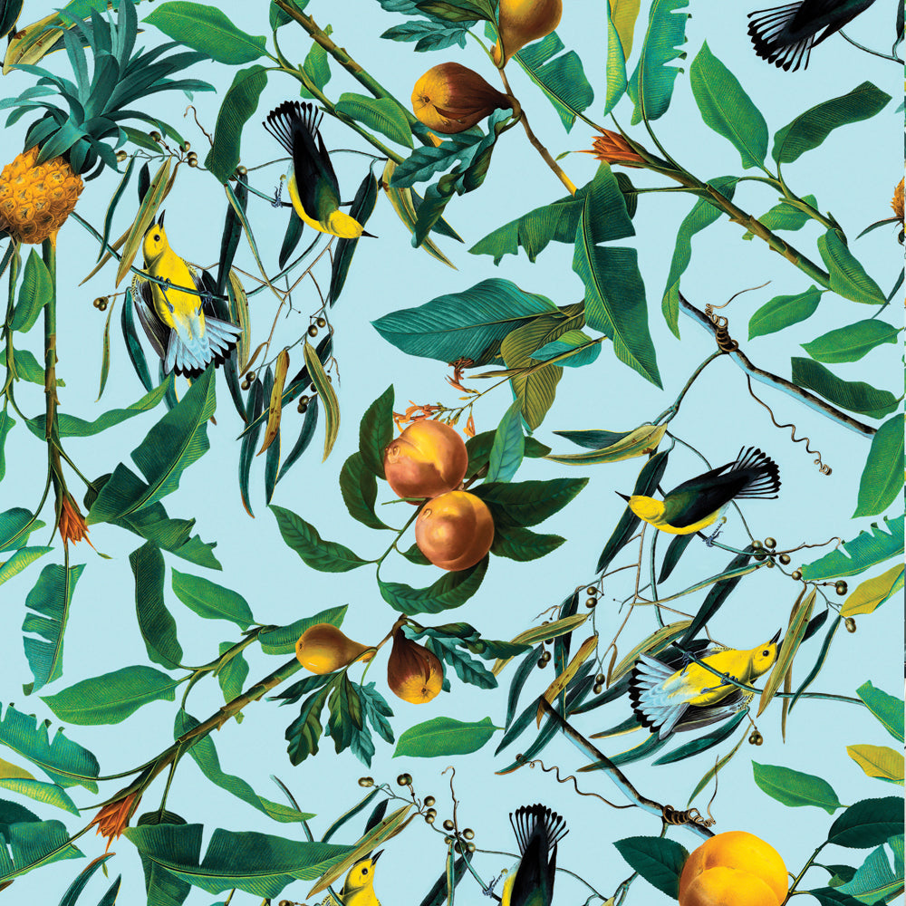 Papel Mural Fruit and Birds Pattern