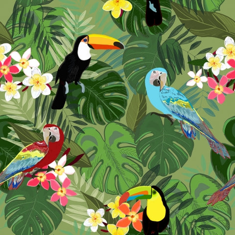 Canvas Parrots and Toucan Tropical Birds Tropical Forest