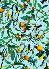 Canvas Fruit and Birds Pattern
