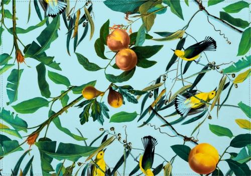 Individuales Fruit and Birds Pattern