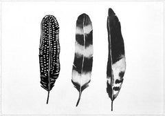 Individuales Dark Feather - Galeria Impresionarte