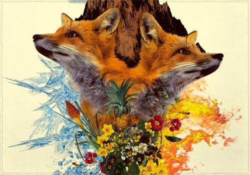 Individuales Fox and Floral - Galeria Impresionarte