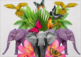 Individuales Animals - Galeria Impresionarte