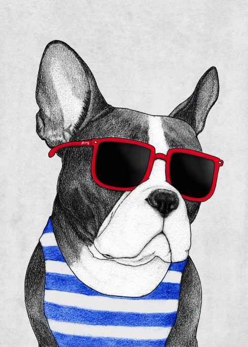 Canvas Frenchie Summer Style
