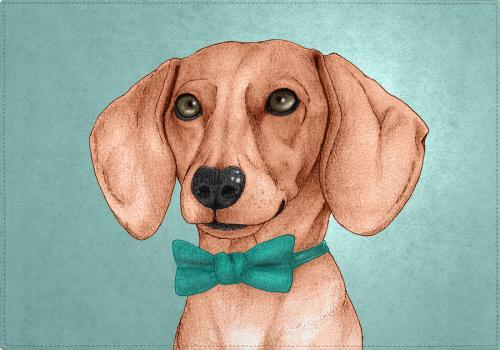 Individuales Dachshund, The Wiener Dog.