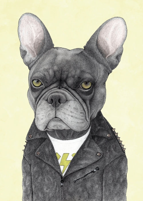 Canvas Hard Rock French Bulldog