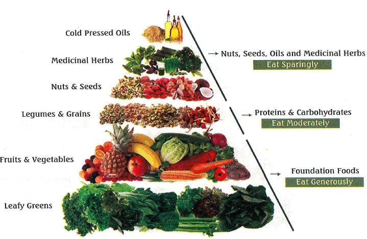 food pyramid without meat