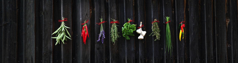 Herbs hanging on a black background.  Herbs that brings healing to depression