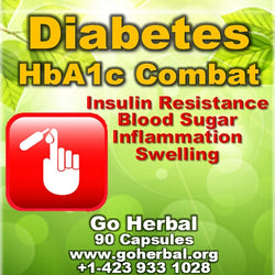 Diabetes Support go Herbal