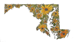 Maryland Black Eyed Susan