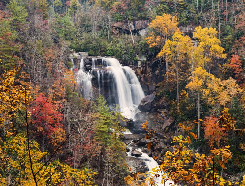 Autumn Waterfall - 50 piece puzzle