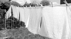 Terry Nappies - How Did You Wash Yours?