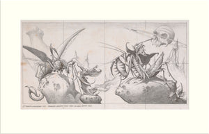 Time Tells No Lies (Praying Mantis) original pencil drawing by Rodney Matthews