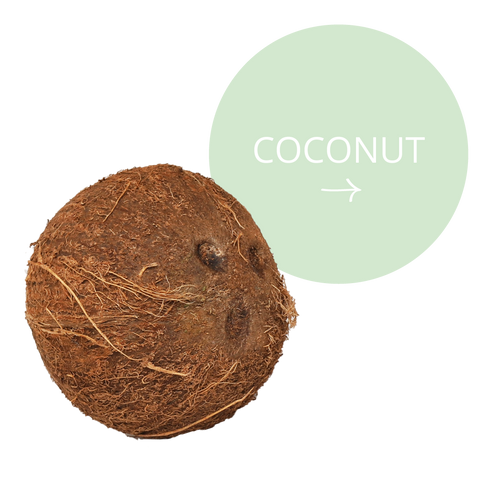 Realm All Natural Ingredients - Coconut