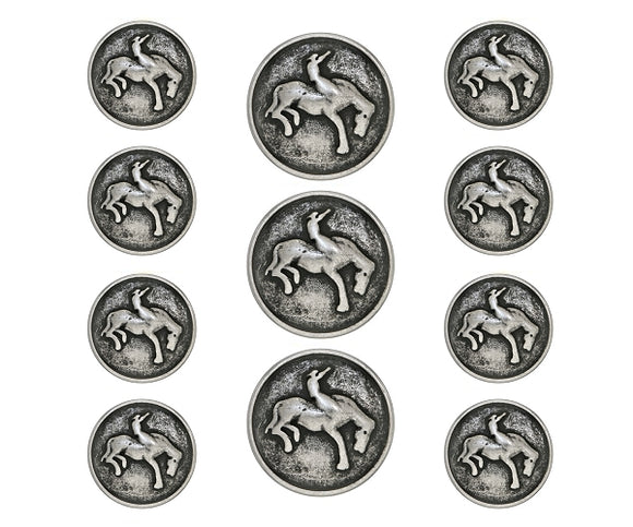 Bronco 11 pc Metal Blazer Button Set Antique Silver Color