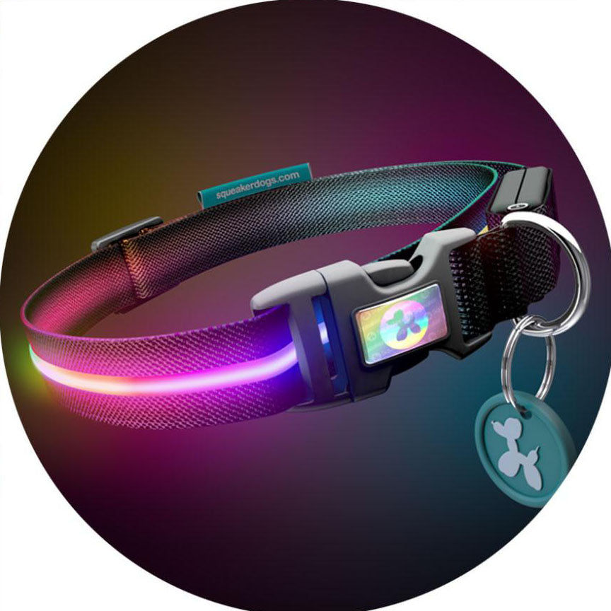 Double Rainbow RGB Light Up Flashing Dog Collar
